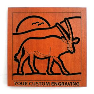 drink coasters gemsbok